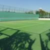 【壁打ちテニス】小菅東スポーツ公園